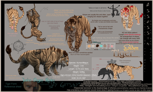 Jay - Tiger form Ref sheet by Dalkur