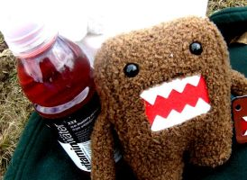 Vitamin Water with Domo Kun by TheInsaneRainbow