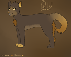 Qiu Reference by SombreDemeanor