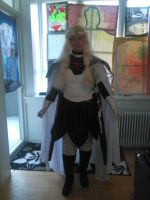 cosplay me as udine from claymore 1 by daylover1313