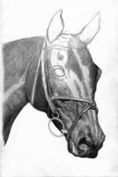 Eventer WIP 3 by Scotston