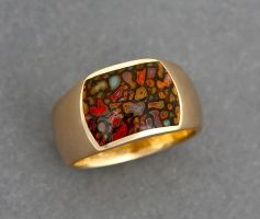14K Gold Dino Bone Inlay Ring by jessa1155
