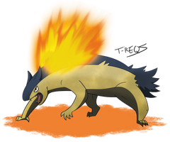 Typhlosion by T-Reqs