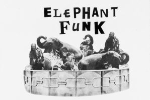 Elephant Funk by jeffreybriggs