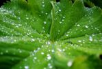 Droplets by Sooty-Jane
