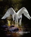Fallen Angel by Horse101Luver2010