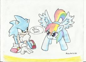 Sonic VS Rainbow Dash by AnibarutheCat