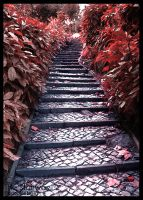 The Stairway by PHUCKOFF