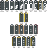 Jeunese Army ranks and shoulder boards by pip-pip-rah