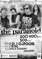 The Paranoid poster by vaccieaux