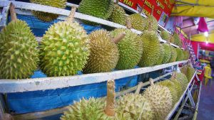 Durian: The King Of Fruits - 1 by AbbyShue