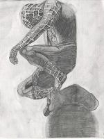 Spiderman! c: by HulkKitty