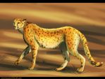 cheetah for Michael by Silverbloodwolf98