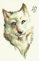 green wolf by kyuubifred
