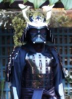 Shogun Vader in the garden by MrOrigami