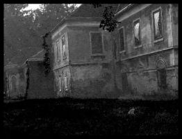 castle Veliki Bukovec in bw by carrolsmith