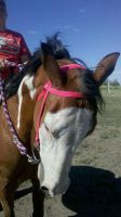 Apache Pretty in Pink by Soppinaro