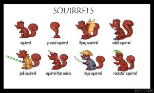 Squirrels by AcaciaTree