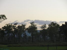 Aussie Bush Sundown by CuriouserX10