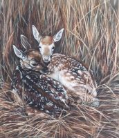 Fallow Fawns - PASTEL by AstridBruning