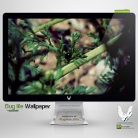 .BUG LIFE. Wallpaper by enemia