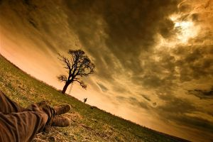 the tree, my friend and I by arbebuk