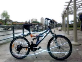 N7 Bike (On Tigre, Buenos Aires) by lincer556