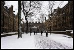 Yale Campus in Winter by hesitation
