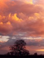 Cloudly Sunset by davepphotographer