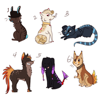 Adopts Closed by hyruchewey