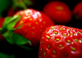 strawberries by beccaTASTROPHE