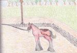 (WON) The Fantasy cup - Foal Exhibition by prte1