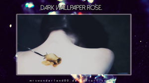 Dark Rose. -Wall- by MrsWonderland00