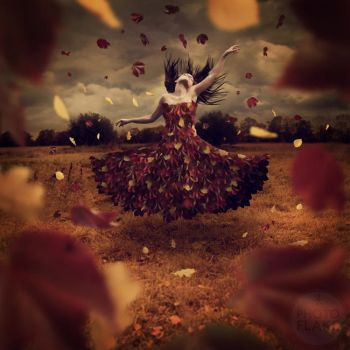 dance of leaves by photoflake