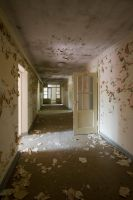 decay_151 by decay-stock