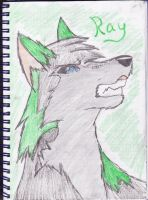 Ray The Wolf by Mimirox