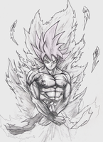 SSJ God Goku by NovaSayajinGoku