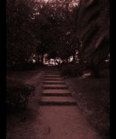 The path by FreeSpit