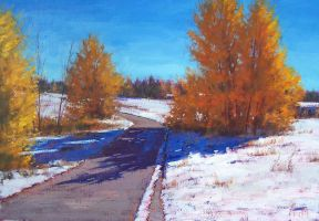 Early Snow by artsaus
