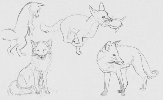 Daily Sketches - 24 April 2016 by RhynnCollins