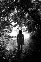 I Can See the Sunlight by phograph