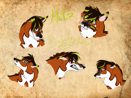 Hutz - face expressions by StanHoneyThief