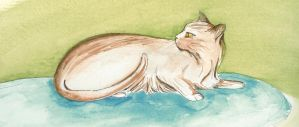 Watercolor Cat by Pyramidcat