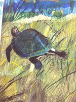 Sea Turtle Pastel Drawing by PuppyDawg1022