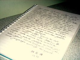 journal entry 07.12.07 by vudin