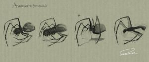 arachnid studies by cgmodeler