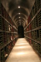 Wine Cellar by The13thZomber