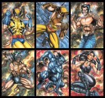 WOLVERINE BEAST X23 SKETCH CARDS by AHochrein2010