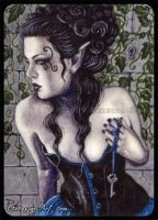 ACEO -- The Secret Door by ElvenstarArt