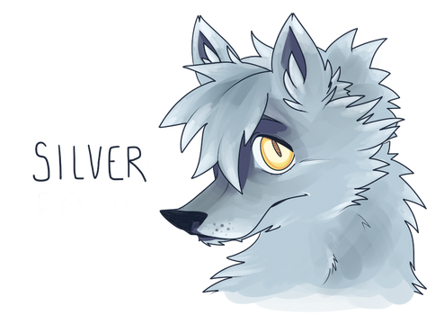 Silver by silverfangcreations